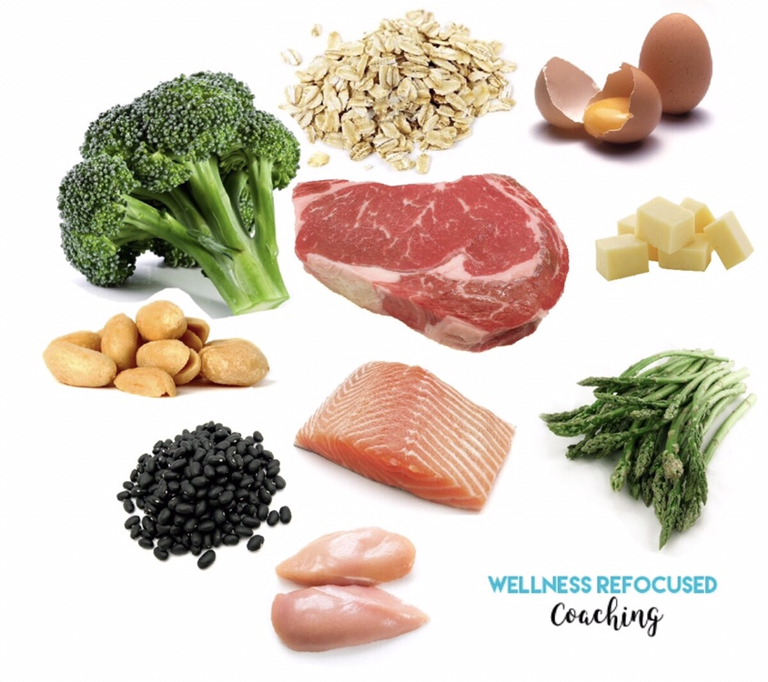 Wellness Refocused Education: Protein and Amino Acids