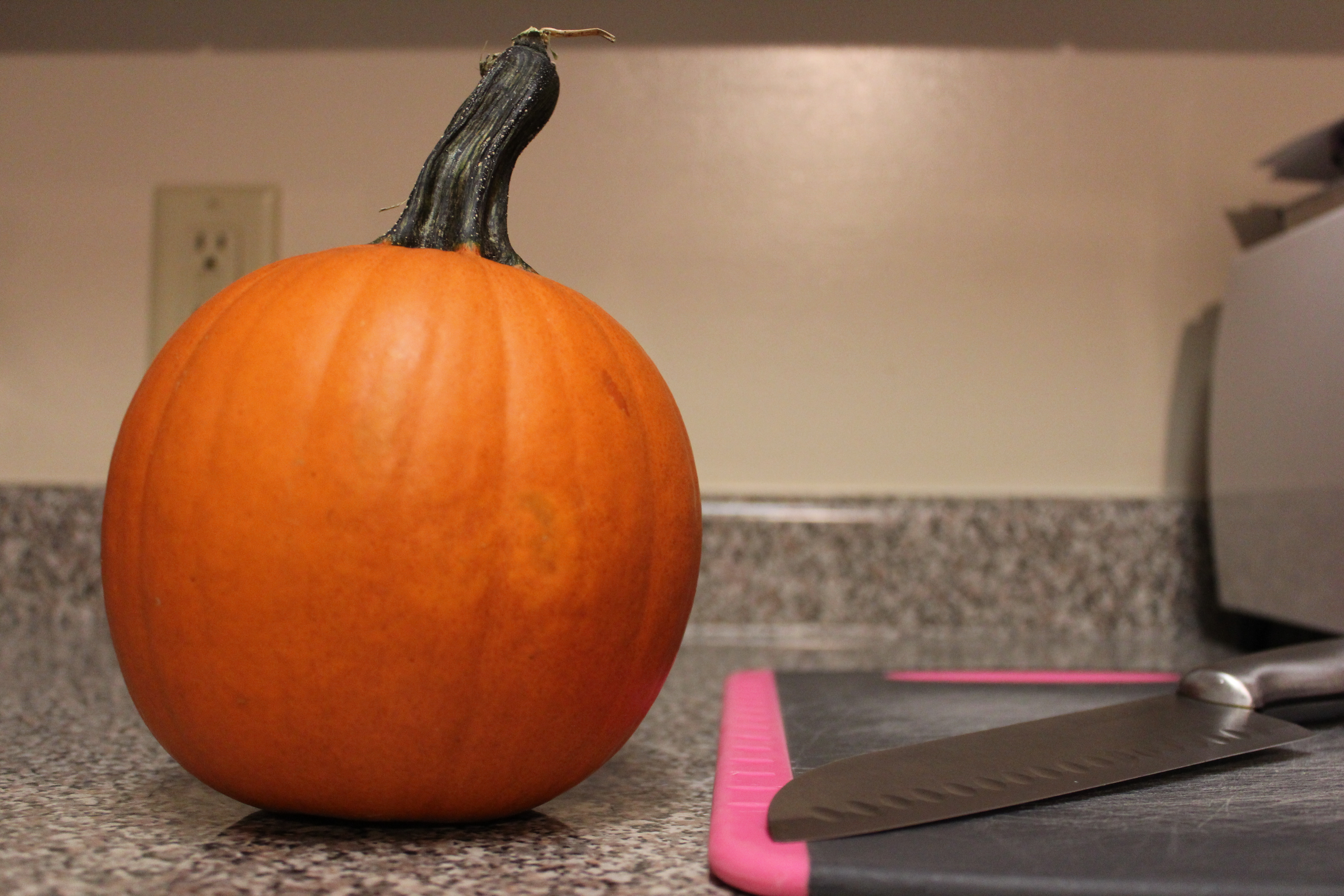 Recipe: Pumpkin Puree